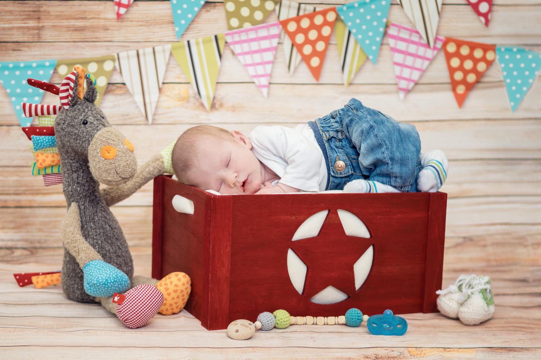 Newbornfotos Dresden Babyfotos
