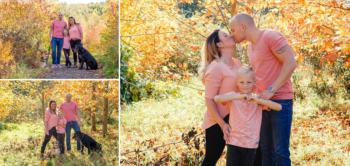 Familienfotos Dresden Herbstspaziergang Familie und Hunde