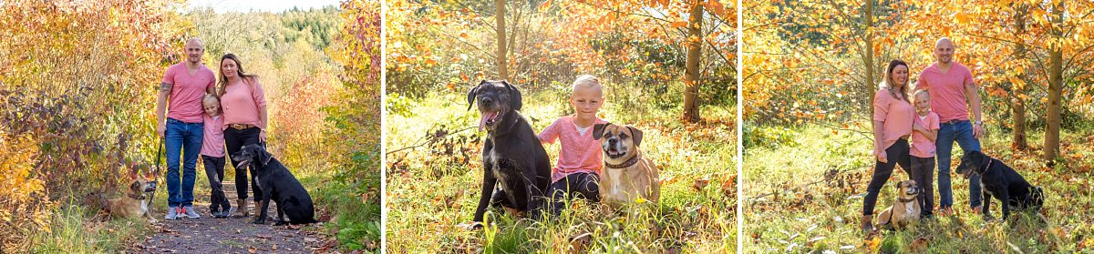 Familienfotos Dresden Herbst Kind und Hunde Familie